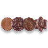 fleurs chocolats
